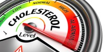 How To Understand What Your Cholesterol Numbers Mean