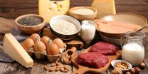 The Top 14 High Protein Foods To Eat Healthy